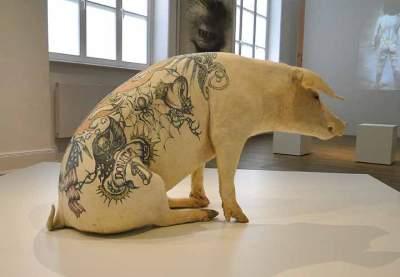 annaschmidt-berlin.com_tattoo10